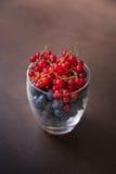 Ένα σύνολο γυαλιού των νόστιμων βακκινίων και των κόκκινων σταφίδων στοκ φωτογραφία με δικαίωμα ελεύθερης χρήσης