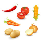 Ένα σύνολο εύγευστων λαχανικών Απεικόνιση αποθεμάτων