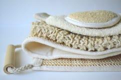 Ένα σύνολο διάφορων καλλυντικών βουρτσών μασάζ σωμάτων ομορφιάς για το ξηρό βούρτσισμα Στοκ Εικόνες