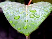 Ένα σύνολο καρδιών των δακρυ'ων Στοκ εικόνες με δικαίωμα ελεύθερης χρήσης