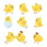 Ένα σύνολο κοτόπουλου κινούμενων σχεδίων Συλλογή των ευτυχών κίτρινων νεοσσών πουλιά λίγα επίσης corel σύρετε το διάνυσμα απεικόν Στοκ φωτογραφία με δικαίωμα ελεύθερης χρήσης