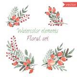 Ένα σύνολο μούρων, λουλουδιών και φύλλου watercolor Στοκ φωτογραφία με δικαίωμα ελεύθερης χρήσης