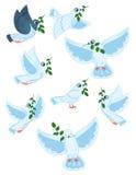 Ένα σύνολο παγκόσμιων περιστεριών με έναν κλάδο μιας ελιάς Συλλογή των πετώντας άσπρων περιστεριών Λογότυπα με τα τυποποιημένα πο Στοκ Εικόνα