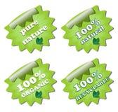 Ένα σύνολο πράσινων ετικετών οικολογίας Στοκ εικόνες με δικαίωμα ελεύθερης χρήσης
