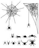Ένα σύνολο σκιαγραφιών των αραχνών και των ιστών αράχνης Συλλογή των μαύρων σκιαγραφιών των αραχνών για αποκριές Δηλητηριώδη έντο Στοκ Εικόνα