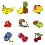 Ένα σύνολο φρούτων επίσης corel σύρετε το διάνυσμα απεικόνισης Καλοκαίρι ελεύθερη απεικόνιση δικαιώματος