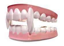 Ψεύτικα δόντια βαμπίρ καθορισμένα απομονωμένα Στοκ Φωτογραφίες