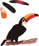 Ένα σύνολο hand-drawn watercolor που περιέχει το toco α Ramphastos πουλιών Στοκ Φωτογραφία