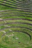 Ένα τμήμα των απίστευτων αρχαίων κύκλων Moray στο Περού Στοκ φωτογραφίες με δικαίωμα ελεύθερης χρήσης