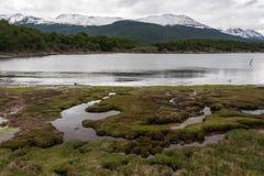 Ένα τοπίο μεταξύ του νότου νησιών Ushuaia, Αργεντινή, την άνοιξη Στοκ Εικόνες
