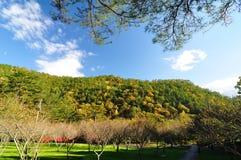 Ένα τοπίο ομορφιάς στοκ εικόνες με δικαίωμα ελεύθερης χρήσης