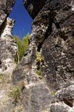Ένα τρέκλισμα διαμόρφωσε το χάσμα που είδε μεταξύ των δύσκολων βουνών Στοκ Εικόνα