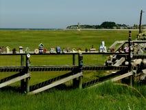 Ένα τρέξιμο των διακοσμημένων κιβωτίων πουλιών Στοκ εικόνα με δικαίωμα ελεύθερης χρήσης