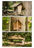 Ένα τρίπτυχο των κιβωτίων πουλιών στοκ εικόνες