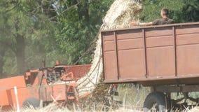 Ένα τρακτέρ και μια αγροτική θεριστική μηχανή κόβουν το σίτο στον τομέα, fingering ατόμων ο σανός απόθεμα βίντεο