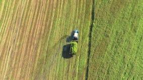 Ένα τρακτέρ με ένα ρυμουλκό ταξιδεύει κατά μήκος του γεωργικού τομέα Το ρυμουλκό γεμίζουν με την πρόσφατα κομμένη χλόη απόθεμα βίντεο