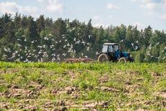Ένα τρακτέρ οργώνει τον τομέα μια φωτεινή ηλιόλουστη ημέρα Αγροτικό τοπίο άνοιξη Στοκ Φωτογραφία