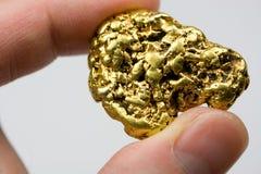 Ένα τρόυ χρυσό ψήγμα Καλιφόρνιας ουγγιών Στοκ εικόνα με δικαίωμα ελεύθερης χρήσης