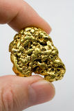 Ένα τρόυ χρυσό ψήγμα Καλιφόρνιας ουγγιών Στοκ φωτογραφία με δικαίωμα ελεύθερης χρήσης