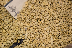 Ένα φασόλι καφέ σε ένα εμπορευματοκιβώτιο και με ψημένος και ακατέργαστος Αντιπροσωπεύστε έναν φρέσκο και μια μυρωδιά του καφέ Στοκ φωτογραφία με δικαίωμα ελεύθερης χρήσης