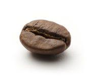 Ένα φασόλι καφέ στοκ εικόνα