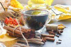 Ένα φλυτζάνι του θερμαμένου κρασιού που περιβάλλεται από τα κίτρινα φύλλα και τα καρυκεύματα φθινοπώρου στοκ εικόνες με δικαίωμα ελεύθερης χρήσης