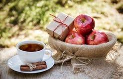 Ένα φλυτζάνι του καυτού τσαγιού και των juicy κόκκινων μήλων Φθινόπωρο και τσάι συγκομιδών με τα μήλα και την κανέλα Στοκ Φωτογραφία