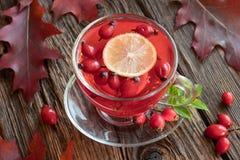 Ένα φλυτζάνι rosehip του τσαγιού με rosehips και το φθινόπωρο φεύγει στοκ εικόνες