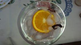 Ένα φρέσκο πορτοκάλι Στοκ Εικόνες