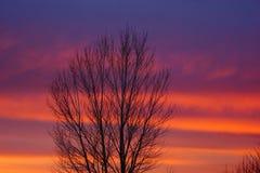 Ένα φωτεινό χρωματισμένο ηλιοβασίλεμα στο Νέο Μεξικό στοκ φωτογραφία