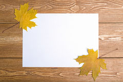 Ένα φύλλο του εγγράφου με το φύλλο φθινοπώρου Στοκ Εικόνα