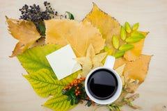 Ένα φλιτζάνι του καφέ και μια σημείωση με την ανθοδέσμη των φύλλων, των μούρων και των σπόρων φθινοπώρου Στοκ φωτογραφίες με δικαίωμα ελεύθερης χρήσης
