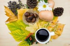 Ένα φλιτζάνι του καφέ με την ανθοδέσμη των φύλλων, των μούρων και των σπόρων φθινοπώρου Στοκ Εικόνα