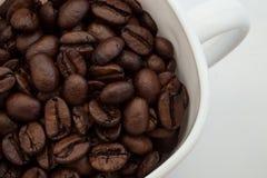 Ένα φλυτζάνι και φασόλια καφέ Στοκ Εικόνα