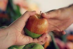 Ένα χέρι ατόμων από ένα πράσινο και κόκκινο μήλο σε ένα άλλο άτομο Στοκ εικόνα με δικαίωμα ελεύθερης χρήσης