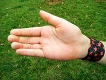 Ένα χέρι κοριτσιών Στοκ εικόνες με δικαίωμα ελεύθερης χρήσης