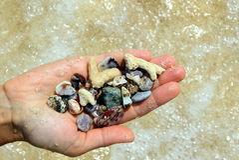 Ένα χέρι με διαφορετικές θαλασσινά κοχύλια και πέτρες στο υπόβαθρο παραλιών θάλασσας το ηλιόλουστο καλοκαίρι ξεπερνά Στοκ Εικόνα