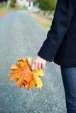 Ένα χέρι με τα φύλλα Στοκ Φωτογραφίες