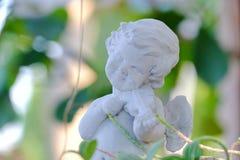 Ένα χαριτωμένο άσπρο γλυπτό cupid που παίζει ένα βιολί και που κοιτάζει επίμονα σε έναν πράσινο κήπο στοκ εικόνες με δικαίωμα ελεύθερης χρήσης