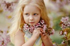 Ένα χαριτωμένο γοητευτικό ξανθό κορίτσι με την πολύβλαστη τρίχα που χαμογελά σε ένα ρόδινο sak Στοκ εικόνες με δικαίωμα ελεύθερης χρήσης