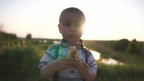 Ένα χαριτωμένο μικρό παιδί που τρώει μια πίτα μεταξύ της πρασινάδας στη φύση, σε αργή κίνηση απόθεμα βίντεο