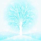Ένα χειμερινό δέντρο Στοκ Εικόνα