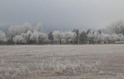 Ένα χειμερινό πρωί στη Λυών, Κολοράντο Στοκ Φωτογραφίες