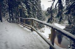 Ένα χιονώδες ίχνος πεζοπορίας από τον ποταμό Στοκ φωτογραφία με δικαίωμα ελεύθερης χρήσης