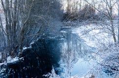 Ένα χιονώδες ρυάκι στη μέση των ξύλων στοκ εικόνα με δικαίωμα ελεύθερης χρήσης