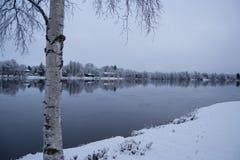 Ένα χιονώδες riwer Στοκ Εικόνα