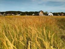 Ένα χωριό στην άκρη του τομέα Στοκ Φωτογραφίες