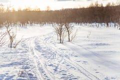 Ένα όμορφο άσπρο τοπίο μιας χιονώδους χειμερινής ημέρας με τις διαδρομές για το όχημα για το χιόνι ή το έλκηθρο σκυλιών Στοκ Εικόνες