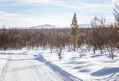 Ένα όμορφο άσπρο τοπίο μιας χιονώδους χειμερινής ημέρας με τις διαδρομές για το όχημα για το χιόνι ή το έλκηθρο σκυλιών Στοκ Φωτογραφία