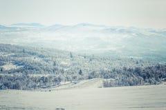 Ένα όμορφο άσπρο τοπίο μιας χιονώδους χειμερινής ημέρας με τις διαδρομές για το όχημα για το χιόνι ή το έλκηθρο σκυλιών Στοκ Φωτογραφίες